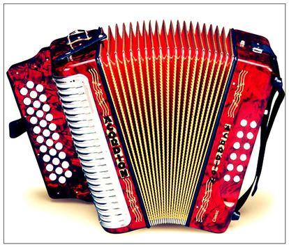 Learn how to play accordion online poster