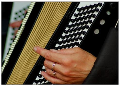 Learn how to play accordion online screenshot 1