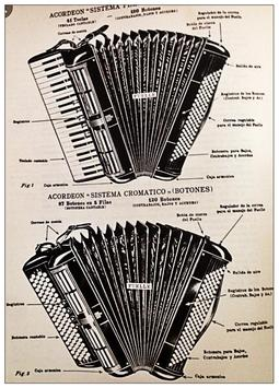 Learn how to play accordion online screenshot 2
