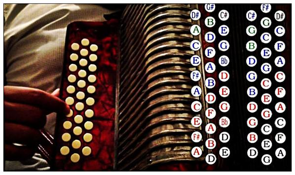 Learn how to play accordion online screenshot 7