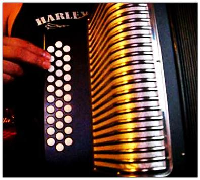 Learn how to play accordion online screenshot 6