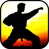Learn martial arts icon