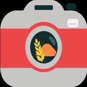 PhotoGrain icon
