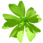 flora_austriaca_quiz icon