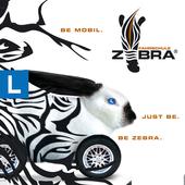 Fahrschule Zebra 图标
