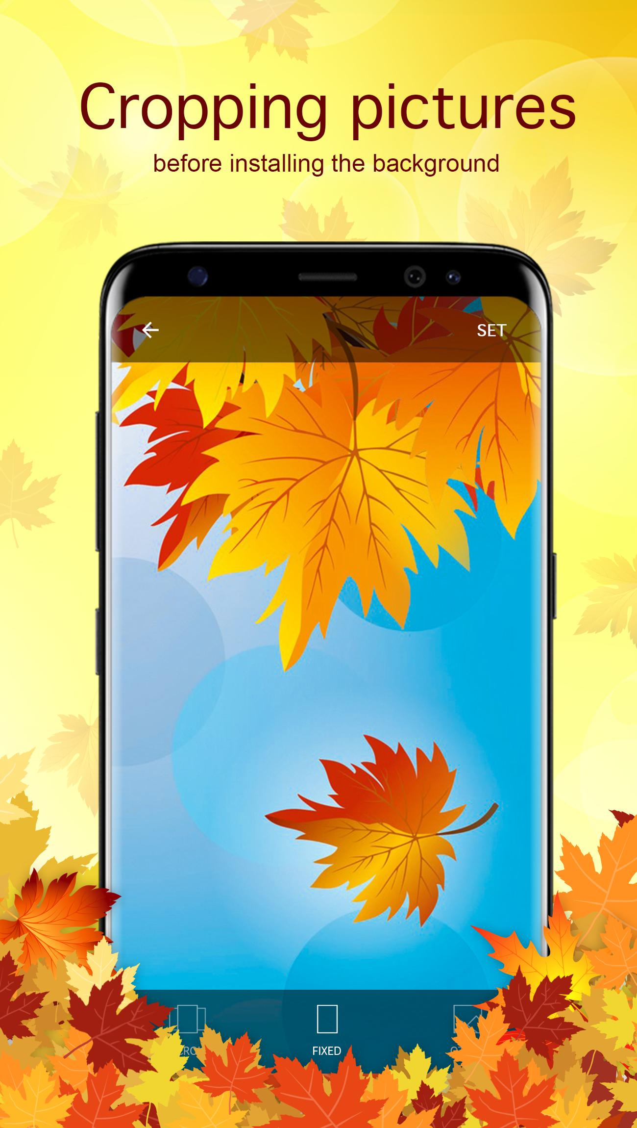 Autumn Backgrounds Wallpapers For Android Apk Download