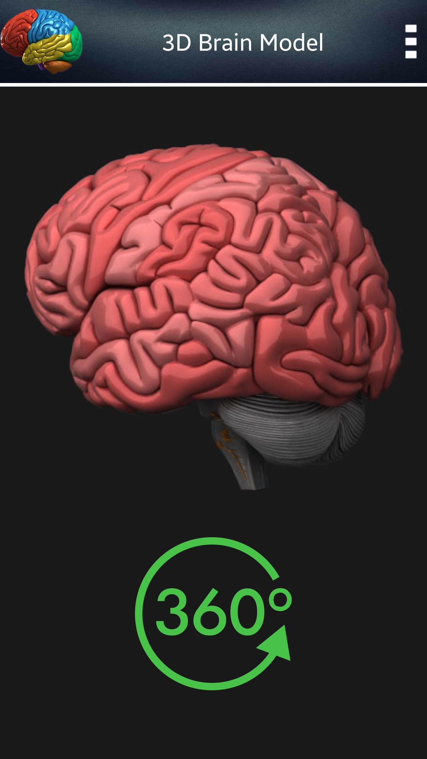 3D Human Brain for Android - APK Download