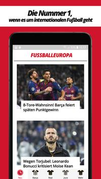 Fussball Europa screenshot 5