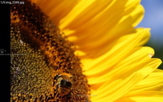 Digital Photo Frame Slideshow screenshot 8