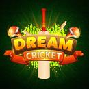 Dream Cricket - Best Game Of 2018 APK
