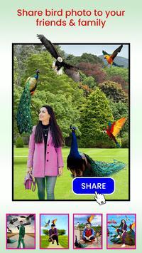 Bird Photo Editor screenshot 7