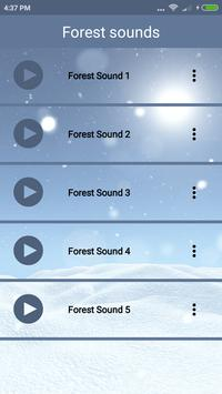Bird sound and puzzle screenshot 4