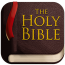 Bible Offline JFA APK