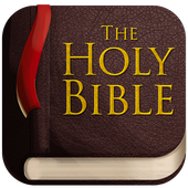 Holy Bible-icoon