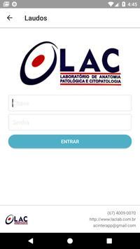 LAC screenshot 4
