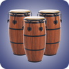 Real Percussion أيقونة