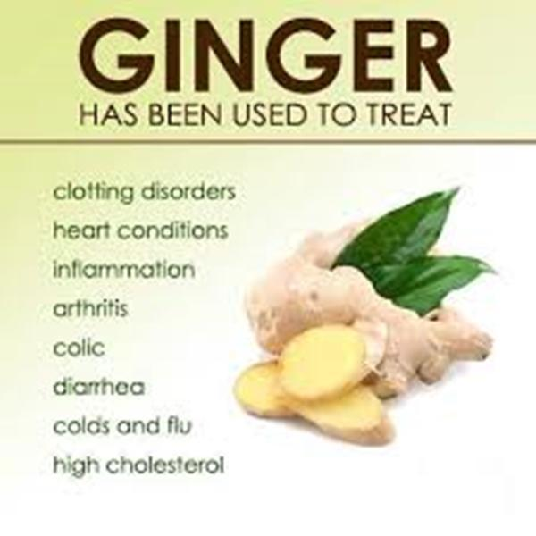 Benefits and Uses of Ginger for Android - APK Download