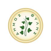 Δήμος Φυλής icon