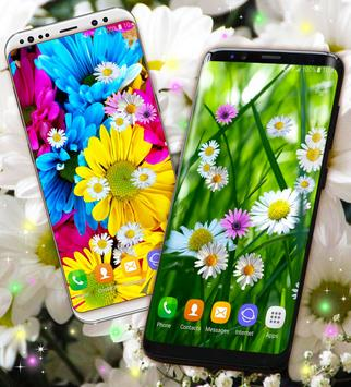 Daisies HQ Live Wallpaper screenshot 1