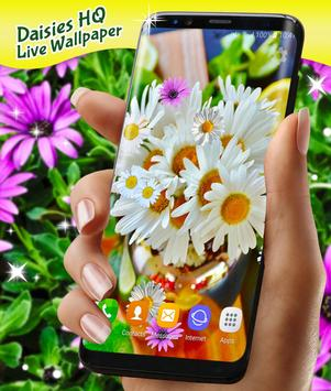Daisies HQ Live Wallpaper screenshot 2