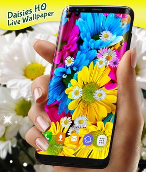 Daisies HQ Live Wallpaper screenshot 3