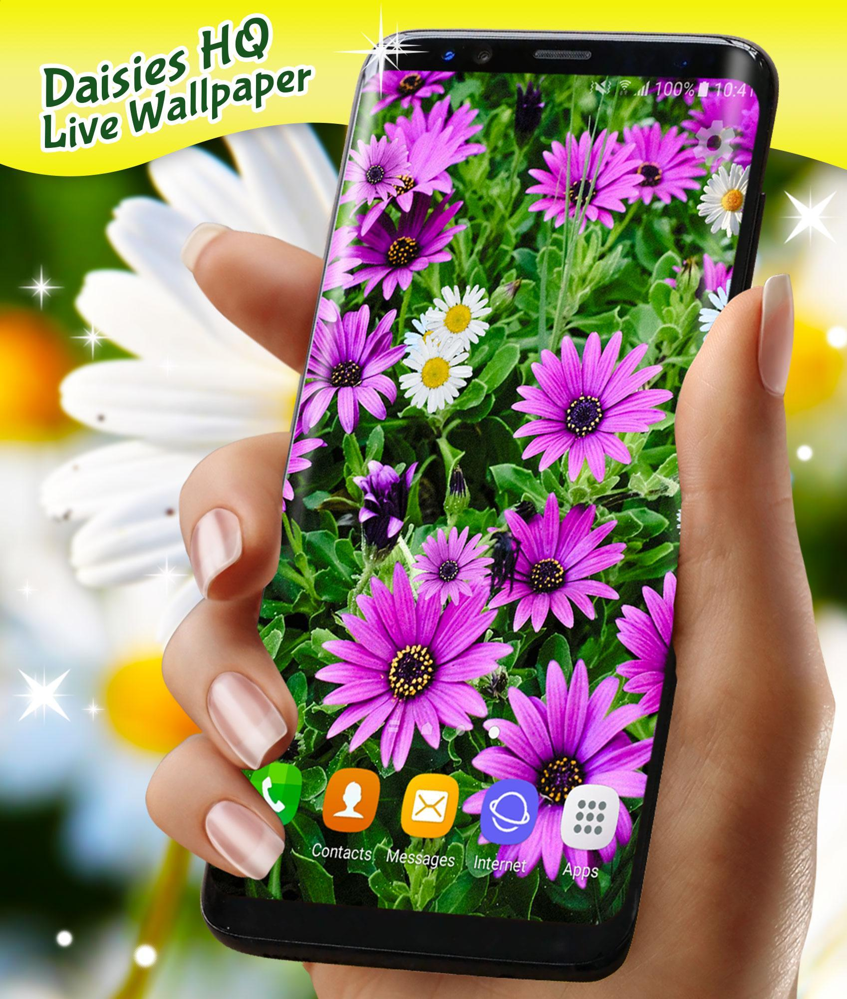 3D Daisy Live Wallpaper For Android