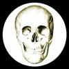 Anatomia ikona