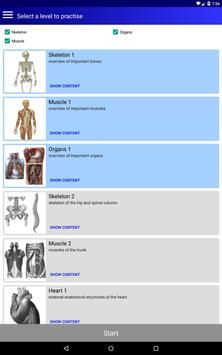 解剖学 截图 8