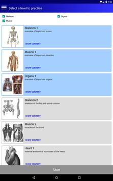 Анатомия скриншот 8