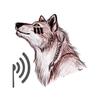 Chirp Wolf 아이콘