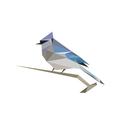BirdNET: Bird sound identification
