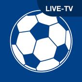 EM 2020 2021 Spielplan TV.de Zeichen