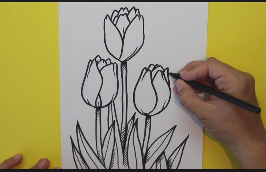 Mais De 500 Desenhos A Lapis Em 3d Desenhar Para Android Apk Baixar