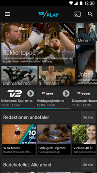 TV 2 PLAY poster