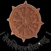Dr. Vijaypat Singhania School icon