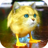 Morph Hybrid Animals for Android - APK Download
