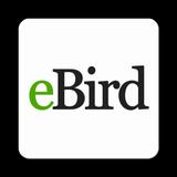 eBird by Cornell Lab