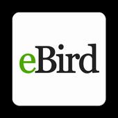 eBird-icoon