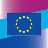 European Solidarity Corps アイコン