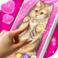 Cute Cat Live Wallpaper ❤️ Fluffy Kitty Wallpapers