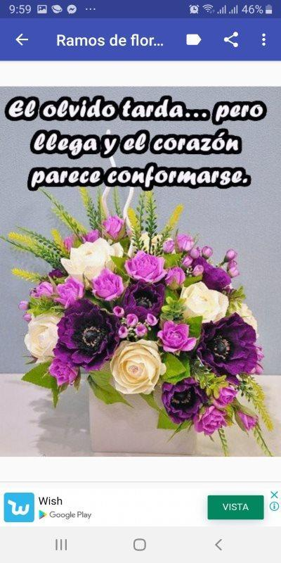 Flores Con Frases Bonitas For Android Apk Download