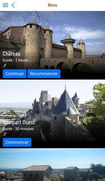 Château et remparts de la cité de Carcassonne poster