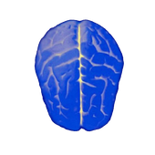 Logical test - IQ icon