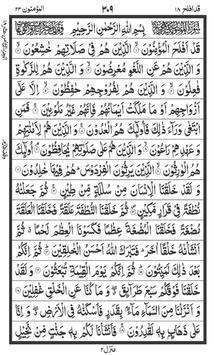 القرآن تصوير الشاشة 1