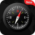 Digital Compass 2019
