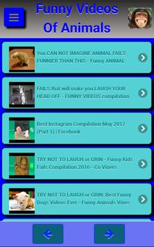 Funny Videos Of Animals poster