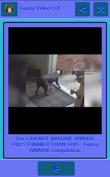 Funny Videos Of Animals screenshot 1