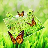 Green Nature Butterflies  Keyboard