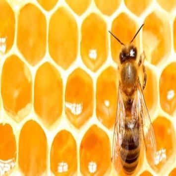 Honey Benefits screenshot 4