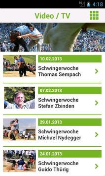 Schwinger screenshot 3